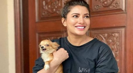 Mehwish Hayat shares painful note for her puppy