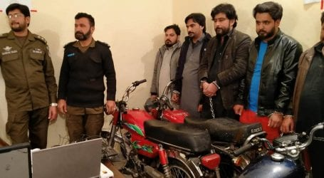 Police busted 40-member dacoit gang in Punjab