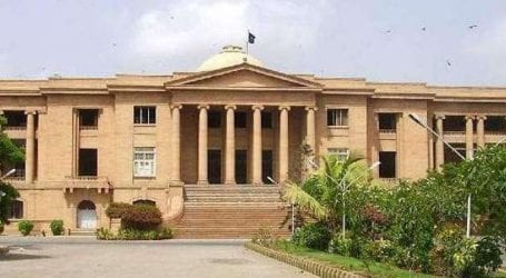 SHC orders local govt to destroy all vegetable cultivated in wastewater