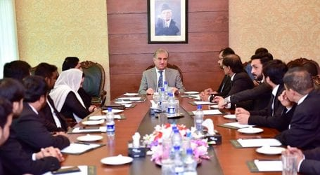 Lawyers' delegation calls on FM Qureshi in Islamabad