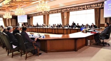 Federal cabinet approves uniform pay scales for government employees