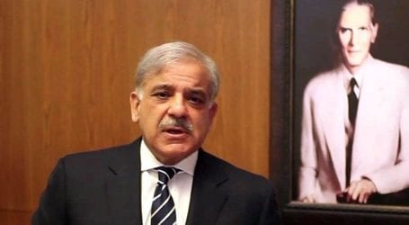 Shahbaz Sharif demands review of govt's lockdown easing policy