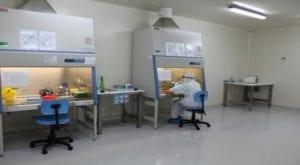 Sindh establishes 'Pakistan's biggest COVID-19 laboratory' at KU
