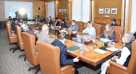 President Alvi directs to work for promotion of online education