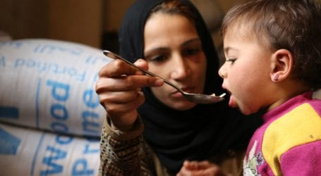 World on brink of 'hunger pandemic': UN food agency chief