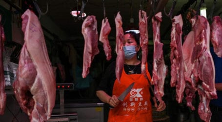 COVID-19: Wuhan officially bans eating wild animals