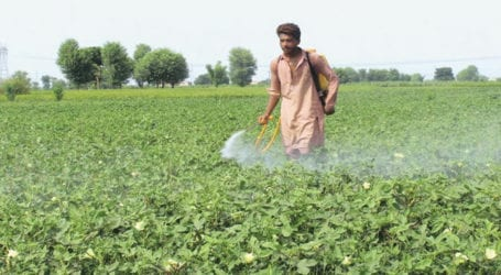 COVID-19: Food ministry prepares relief package for agriculture sector