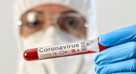 New study finds new COVID-19 version more infectious but not fatal