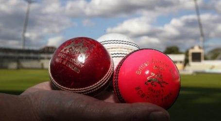 ECB welcomes British govt advice over cricket resumption