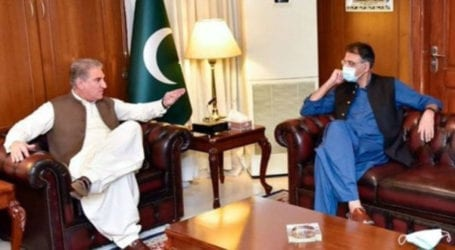 Govt enhancing health facilities to contain COVID-19 spike: FM Qureshi