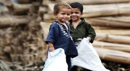 UN warns about risk of worldwide hunger