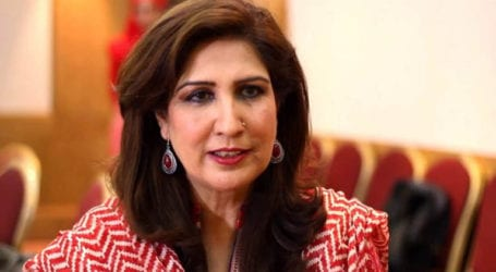 PPP leader Shehla Raza tests positive for COVID-9