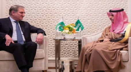 FM Qureshi discusses matters of mutual interest with Saudi counterpart