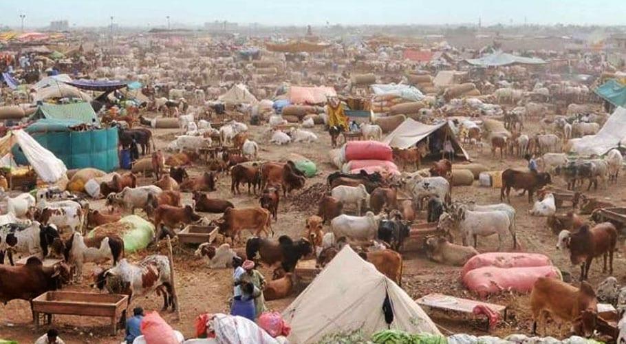 Eid-ul-Adha: Federal govt announces three days holiday