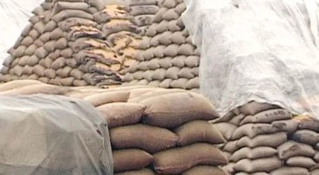Punjab authorities recover hoarded commodities on tip-off