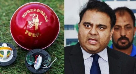 Will develop own smart cricket balls: Fawad Chaudhry