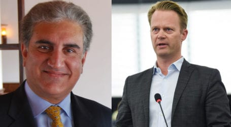 FM Qureshi discusses PIA flight ban with Danish counterpart