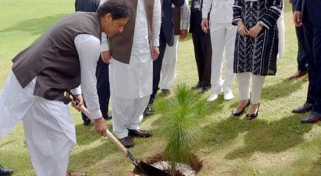 PM to inaugurate Monsoon Tree Plantation campaign today