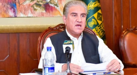 Entire nation stands united on Kashmir issue: FM Qureshi