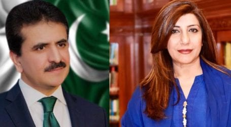 Zahid Hafeez replaces Aisha Farooqui as Foreign Office spokesperson