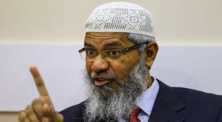 Indian Muslims should form own political party: Zakir Naik