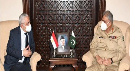 Army chief, Egyptian ambassador discuss bilateral ties
