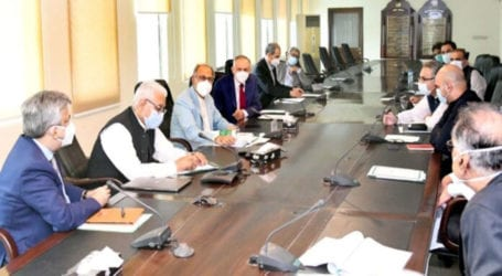 Will adopt all steps to ensure wheat supply across country: Hafeez Shaikh
