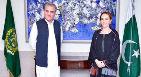 FM Qureshi stresses on inter-parliamentary exchanges