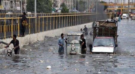 Rains claim 80 lives in Sindh