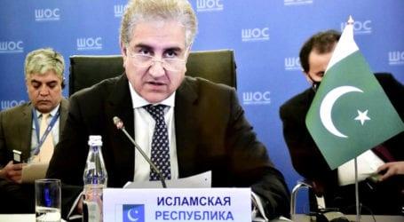 SCO can promote regional cooperation against coronavirus: FM