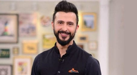 Actor Ali Kazmi's Netflix movie to be released in December