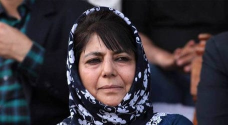 Mob attacks PDP's Jammu office after Mehbooba mufti's comments