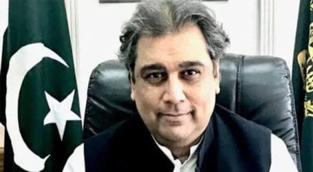 Extensive growth in cargo handling at ports in 11 months: Ali Zaidi