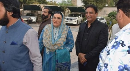 PPP, PML-N should accept defeat in GB elections: Firdous Awan