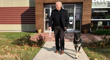 President-elect Joe Biden fractures foot while playing with dog