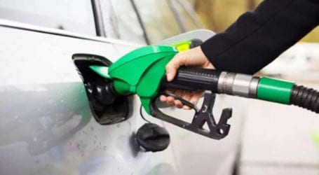 Petroleum commodities production increases 12.71 percent