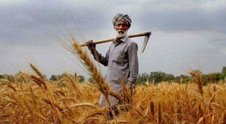 Second 'Kissan Day' being celebrated across nation