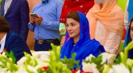 PDM meeting: Maryam to visit all constituencies of Lahore from today