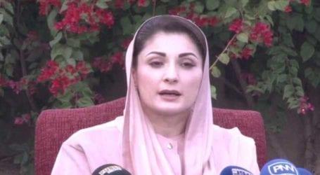 Early Senate elections cannot save PTI government: Maryam Nawaz