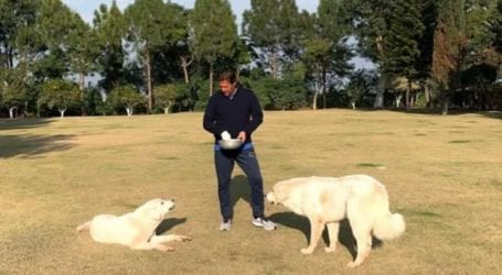 PM Imran spends time with pets amid PDM's Lahore power show