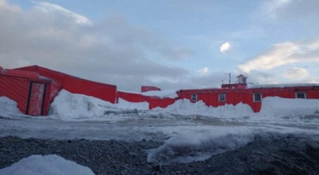 First coronavirus outbreak hits Antarctica as dozens of cases reported