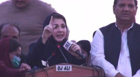 Cabinet members busy playing musical chairs: Maryam Nawaz tells PDM's Mardan rally