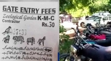 Funds embezzled in Karachi zoo, animals at risk of starvation