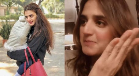 Hira Mani's 'funny' video backfires, accused of normalizing abuse