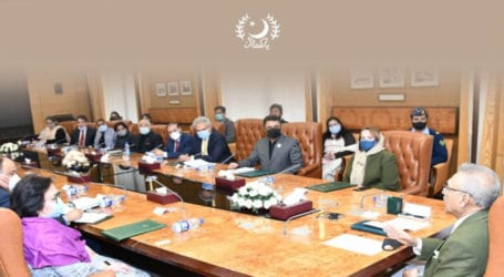 President Alvi directs to provide skill-based training for disabled