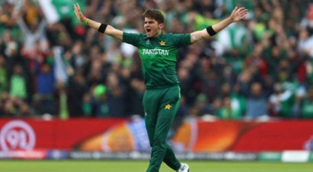 Shaheen Afridi becomes youngest fast bowler to score century of wickets in T20