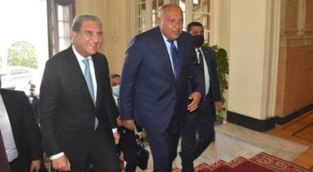 Pakistan, Egypt agree to strengthen economic, trade ties