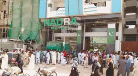 NADRA fires employee for harassing woman