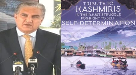 US should not ignore ground realities in IoK: FM Qureshi