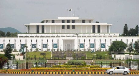 Senate elections to be held on March 3
